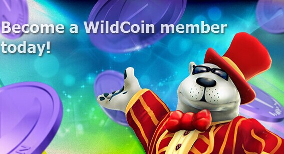 how to get unlimited coins on wildtangent games